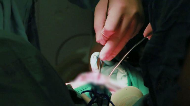 中国医学科学院龙虎国际整形外科医院官网